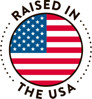 Raised In The USA Logo